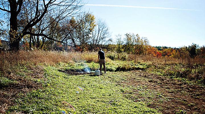 Autumn Planting